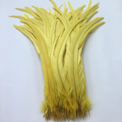 Sowder Yellow Rooster Coque Tail Feathers 41cm - 46cm Lengh Pack of 20