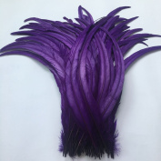 Sowder Purple Rooster Coque Tail Feathers 41cm - 46cm Lengh Pack of 20