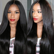 Vigour Beauty Remy Human Hair Brazilian Straight 130% Density Virgin Human Hair Lace Front Wigs For Black Women With Baby Hair Natural Colour 25cm
