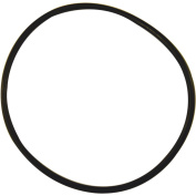 Danco O-Ring