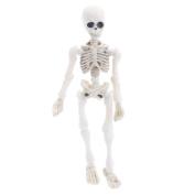 BIGBI Movable Mr. Bones Skeleton Human Model Skull Full Body Mini Figure Toy Halloween
