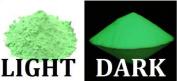 240ml Nite Bright Green Glow-in-th e-Dark Powder Glow in The Dark Pigment Luminous