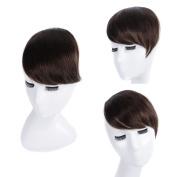 clip in human hair bangs 100% human hair extensions clip in bangs Side Swept