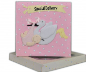 Baby Girl Record Book & Keepsake Box - Special Delivery