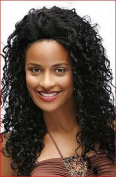 Jazz Wave Human Hair Wig Beyonce HW510