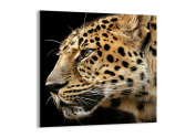 Glass Picture - Glass Print - 1 part - Width