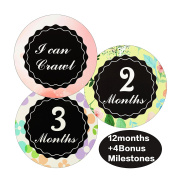 Baby Monthly Stickers - Great Shower Gift or Scrapbook Photo Keepsake for Boys & Girls