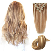 ChicFusion Clip in Real Natural Hair Extensions Mixed Colour Ombre Hair 100G Sliky Straight Hair Pieces with Clips