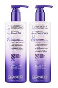Giovanni 2chic Blackberry & Coconut Milk Ultra- Repair Hair Bundle