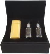 NEW! SKIN UP Sunless Tanning Bronzer Kit - Ultrasonic Device and with Hyaluronic Acid Lotion Combination for Ultimately Misted Sunless Skincare from Italy