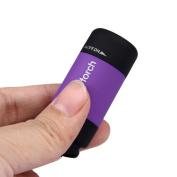 Sunbona Mini-Torch 0.3W 25Lum Flashlight With Keychain ,USB Rechargeable Waterproof LED Light