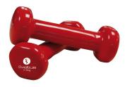 Sveltus Epoxy Dumbbell - Red, 500g