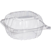 Small Clear Plastic Hinged Food Container 6x6 for Sandwich Salad Party Favour Cake Piece