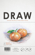 Premium Drawing Paper for Pencil, Ink, Marker and Charcoal. Great for Art, Design and Education. Loose Sheet Packs. (50 Sheet Pack