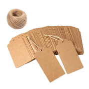 Kraft Paper Gift Tags, OLGY 120 PCS Blank Gift Tags with String, Bonbonniere Favour Rectangular Gift wrap Tags Christmas Gift Tags Wedding gifts Tags.