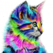 Kixing(TM) 5D Embroidery Colourful Cat Paintings Rhinestone Pasted DIY Diamond Painting Cross Stitch D
