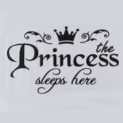 MultiWare Removable Princess Sleeps Wall Stickers Art Vinyl Decals Girls Room Decoration