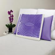 Sealy F01-00073-KG1 Sealy Optimum Memory Foam Pillow with Optigel
