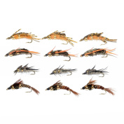 Trout Fly Assortment - Double Bead Nymph Collection 1 Dozen Weighted Nymph Fly Fishing Flies - Hook Sizes 8, 10, 12