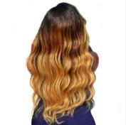 3 Bundles Brazilian virgin hair Body Wave Remy Ombre Hair 1b/4/27