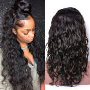 GEM Beauty Hair Water Wave Half Lace Human Hair Wigs Brazilian Virgin Hair Glueless Lace Front Wigs With Baby Hair 1B