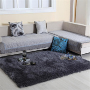 GCF Carpet Rugs Non-Slip Stretch Silk Comfortable Washable Do Not Fade Lving Room Carpet Cute Bedroom Bed Front Bedside Blanket Solid Colour Carpet Computer Chair Cushion 1.2*1.7M , Grey