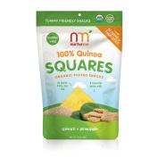 NurturMe Quinoa Square Organic Snacks