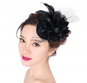 Burlesque Punk Mini Top Hat, Aniwon Black Hair Fascinator Wedding Flower Feather Hair Clip for Women
