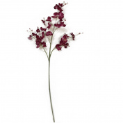 100cm Fuschia Orchid