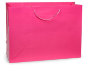 "Hot Pink Gloss Vogue Gift Bags (100 Pack ) 16x 6"" x 30cm"