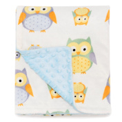 """Boritar Baby Blanket Soft Minky With Double Layer Dotted Backing, Lovely Blue Owls Printed 30""""x47"""""""