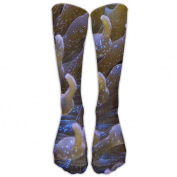 Sea Anemones Under The Sun Athletic Tube Stockings Women's Men's Classics Knee High Socks Sport Long Sock One Size