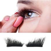 Magnetic Eyelashes, Hometom Classic 3D Magnetic False Eyelashes Extension Tools Natural Makeup