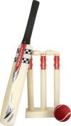 Grey Nicolls Cricket Sports Promotional Events International Mini Game Set