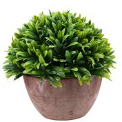 Whosee Bluegrass Green Artificial Fake Green Flower Pot Plant Lucky Grass Orchid Garden Desk Art Decors