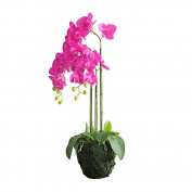 Miz Home Artificial Plant Home Decor Purple Phalaenopsis in Pot