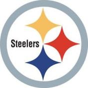 Steelers Sport team Decal Sticker 10 x 10