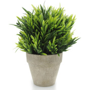 Velener Artificial Plants Fake Mini Potted Grass Arrangements for Home Decor