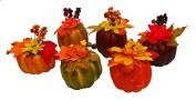 Set of 6 Black Duck Brand Artificial Decorative Harvest 10cm Pumpkins/Gourds Fall Halloween Decorations