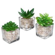 Small Glass Cube Artificial Plant Modern Home Decor / Faux Succulent Planter Pots, Set of 3 - MyGift