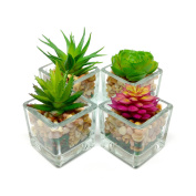 Small Glass Cube Artificial Succulent Planters | Set of Four | Assorted Faux Plants with Smooth Rocks