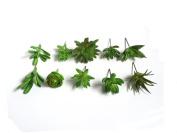 Dect 10pcs Mini Artificial Succulent Plants,Picks For Wedding,Party,Home Decoration