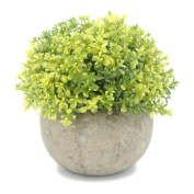 Velener Mini Plastic Artificial Pine Ball Topiary Plant with Pots for Home Decor