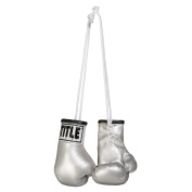 TITLE Boxing Mini Boxing Glove