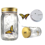 Fangfang LED Lamp Romantic Glass Animated Butterfly Jar Gift Decoration