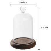 18cm Mini Clear Glass & Wood Cloche Bell Jar Centrepiece / Tabletop Display Case w/ Heart Handle