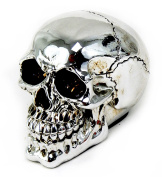 Silver Skull Head Collectible Skeleton Decoration Statue by Bellaa