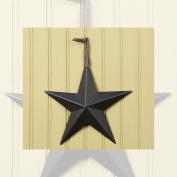 20cm Black Star