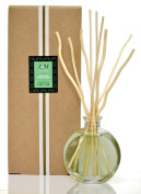 L & M Naturals Spearmint and EUCALYPTUS Diffuser - all in a pretty glass~ Made with real Eucalyptus plant extract~ Perfect Gift~ Made in the USA!