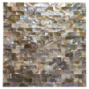 Art3d 6-Pack Colourful Mother of Pearl Shell Tile for Shower Wall, 30cm x 30cm Groutless Subway
